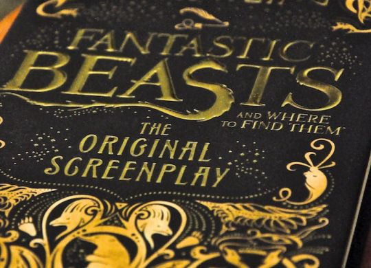 fantastic-beasts-book-image